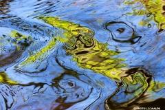 Keväisen puron scifiä