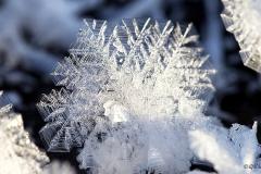 Lumikide on kaunis
