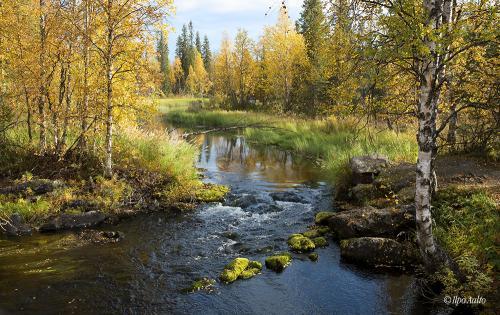 Äkäsmyllyn puro