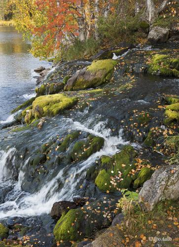 Äkäsmyllyn puroa
