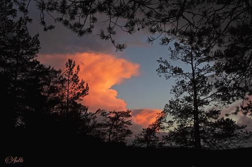 Laskevan auringon värjäämä pilvi