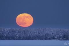 Kuu nousee yllättävän nopeasti